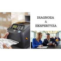 Diagnoza i ekspertyza